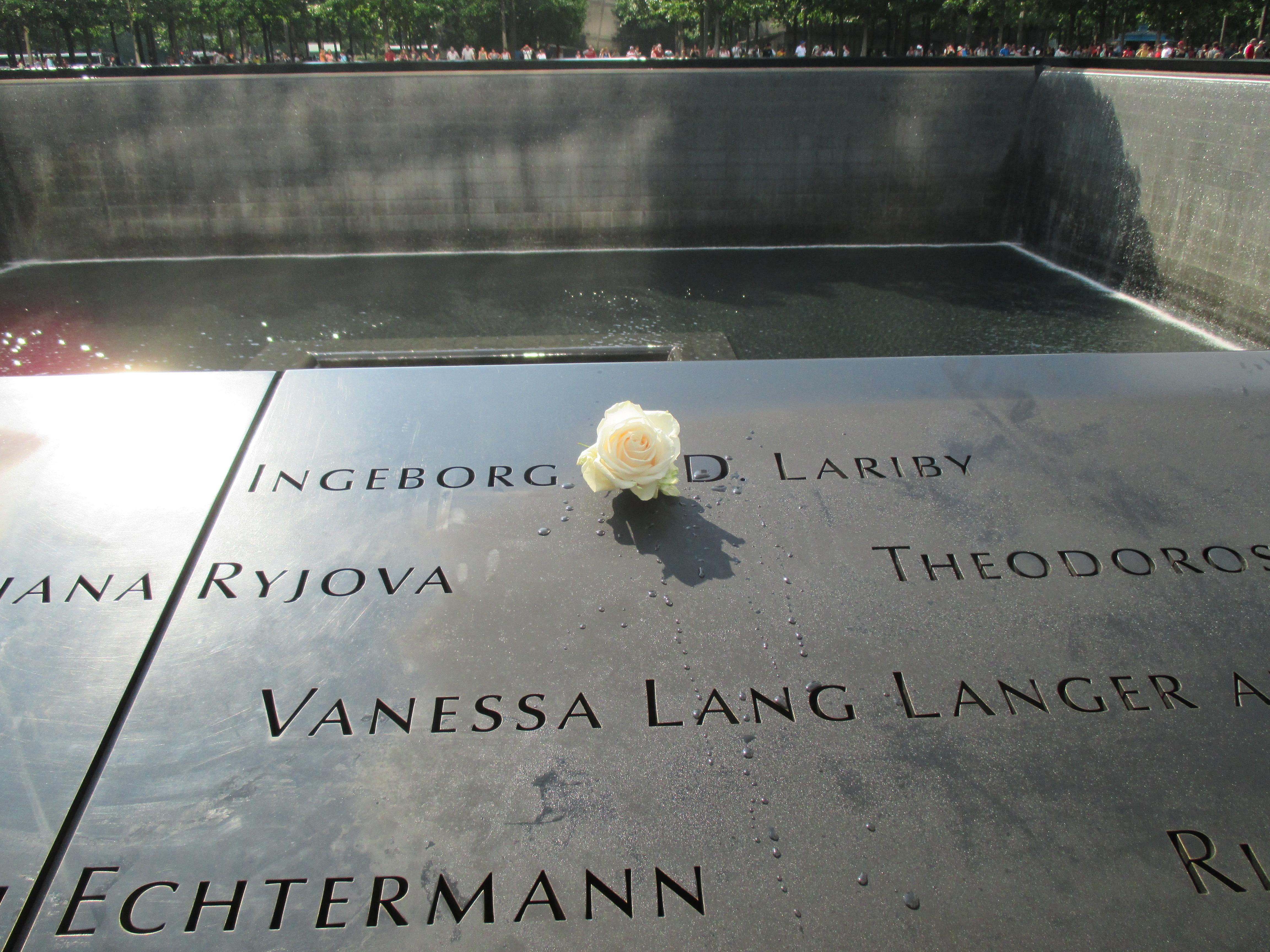White Rose on Victim's Birthday